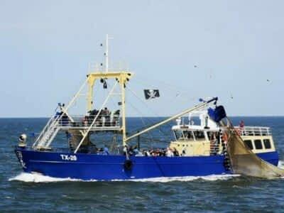 garnalenboot-texel